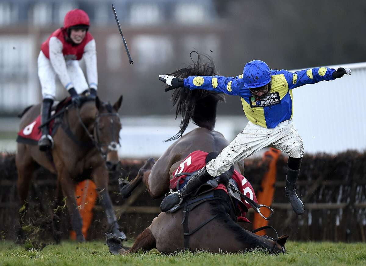 THE FALL OF THE HORSE OF ESHER: Work in Progress (right) lives up to his name, sending jockey Harry Skelton tumbling at the last fence in front of eventual winner Ivy Gate. The horses were competing in the Oxshott Novices' Handicap Hurdle during the Royal Artillery Gold Cup Day at Sandown Park Racecourse in Esher, England.