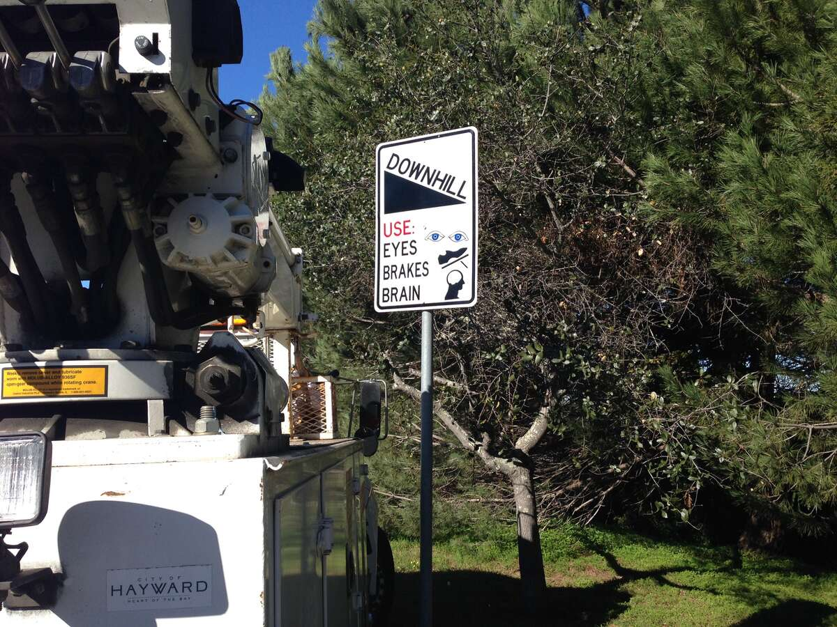 In late January, the city of Hayward debuted several unconventional traffic signs along Hayward Boulevard.