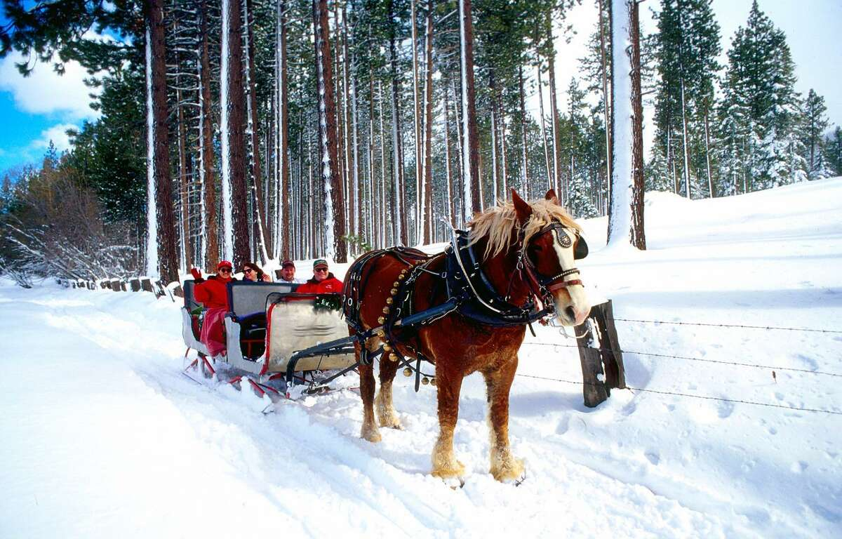 You don't have to take on steep mountain terrain to enjoy the snow at Lake Tahoe. A relaxing sleigh ride provides a closeup view of the scenery.
