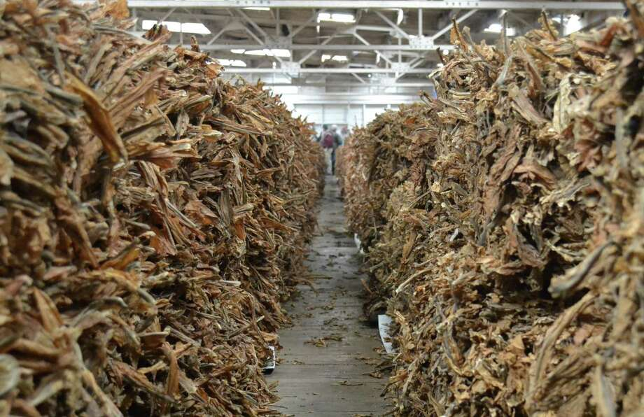 Burley tobacco fills a tobacco warehouse in Danville, Ky. The Kentucky House has endorsed a smoking ban in public buildings and most workplaces, but passage in the Senate is not guaranteed.  Photo: Dylan Lovan, STF / AP