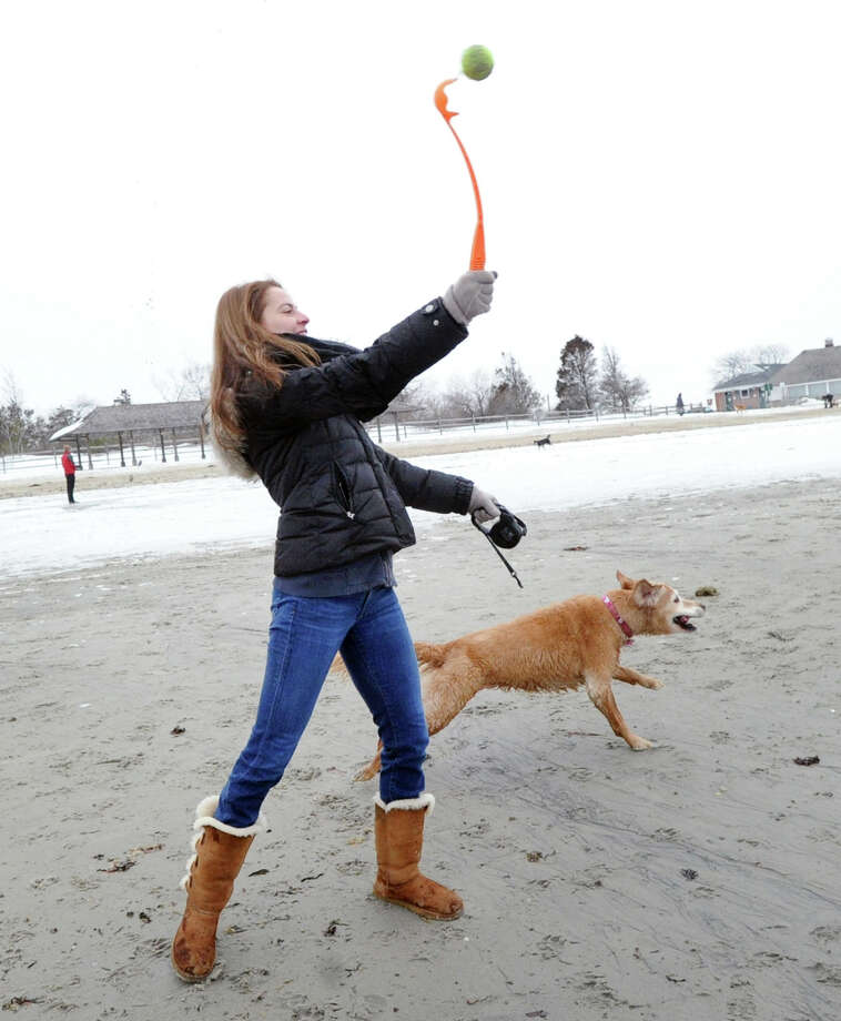 Anna Kokkinos of Rowayton plays fetch with her Golden Retriever, Tessie, on the  beach at Greenwich Point Park, Conn., Saturday, Feb. 14, 2015. Dogs are allowed into Greenwich Parks from December 1st through March 31st. Photo: Bob Luckey / Greenwich Time
