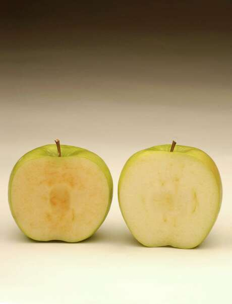A genetically modified Arctic Granny Smith apple, right, doesn't brown as quickly as a normal Granny Smith apple. Two varieties are being marketed. Photo: OKANAGAN SPECIALTY FRUITS, HO / OKANAGAN SPECIALTY FRUITS