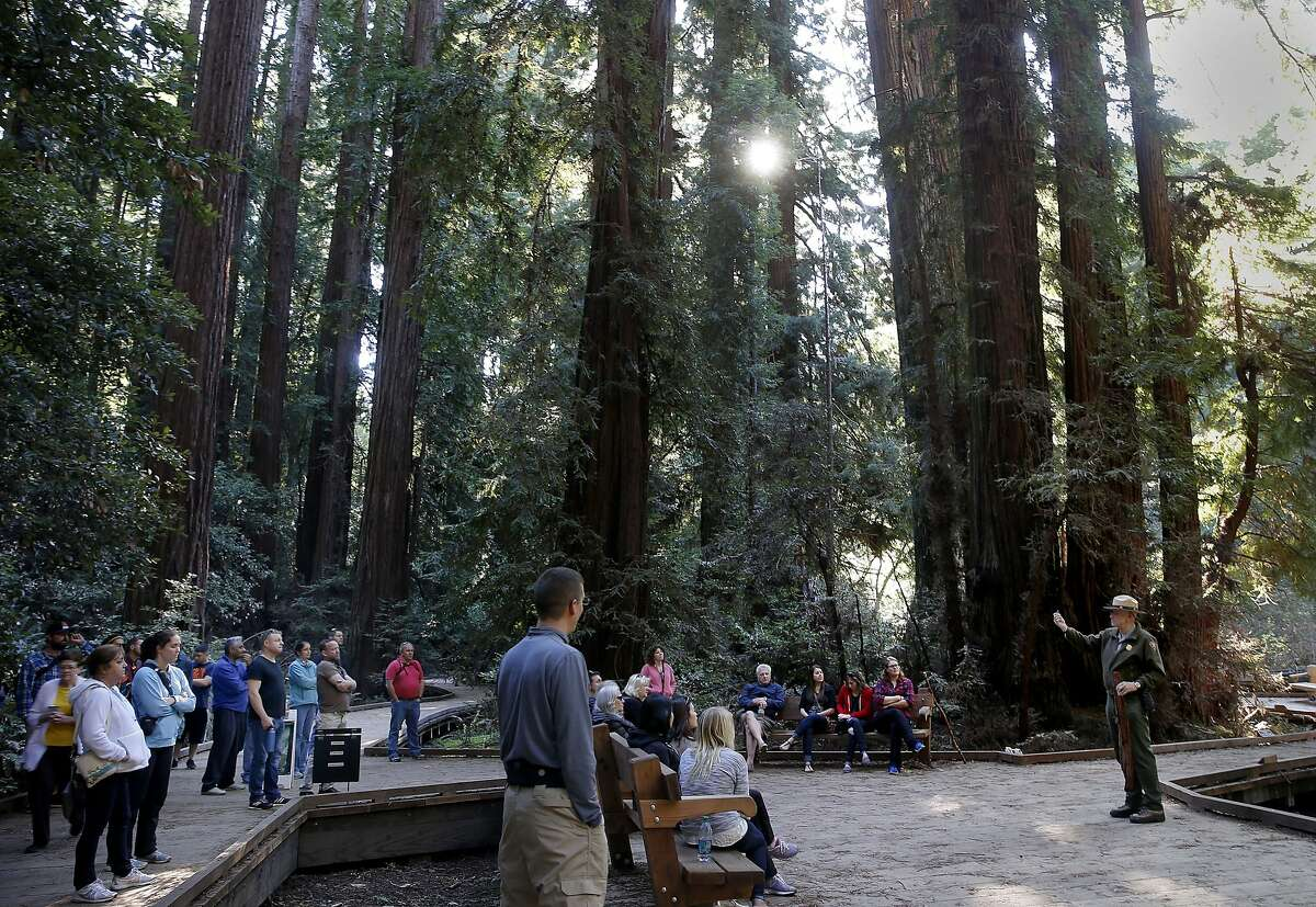 Visitors listened to a ranger talk about the history of Muir Woods at Bohemian Grove Sunday February 15, 2015.