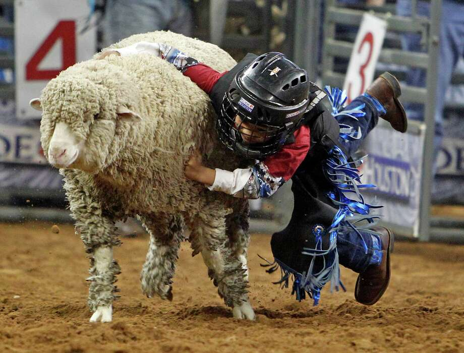 Mutton Bustin' is a crowd-pleasing event each night at RodeoHouston - but you can watch for free throughout the day in the Kids Country Arena at NRG Park. Photo: James Nielsen, Staff / © 2012 Houston Chronicle