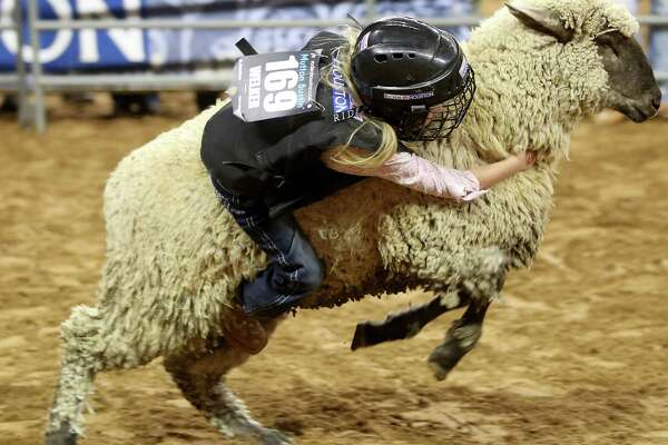 The youngest competitors at RodeoHouston try to stay on a sheep for 8 seconds.