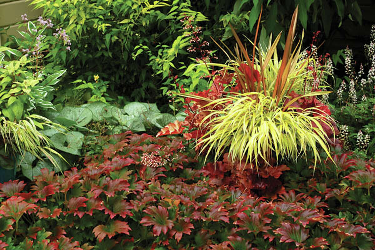 Incorporating colorful foliage is just one of the many ways to create a low-maintenance garden.