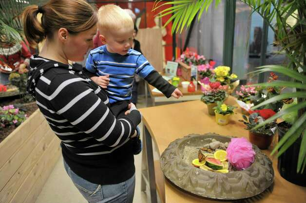 Victoria Haig and her son Dylan, 2, from Cherry Valley look over the butterflies at the butterfly house inside the MiSci, the Museum of Innovation and Science on Monday, Feb. 16, 2015, in Schenectady, N.Y.  The butterfly house is open through April 19th.   (Paul Buckowski / Times Union) Photo: Paul Buckowski / 00030569A