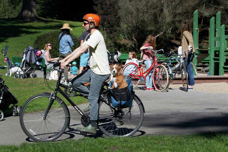 A bicyclist with his dog rides past the Golden Gate Park 45th Avenue playground. Photo: Paul Chinn / The Chronicle / ONLINE_YES