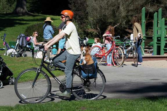 A bicyclist with his dog rides past the Golden Gate Park 45th Avenue playground.