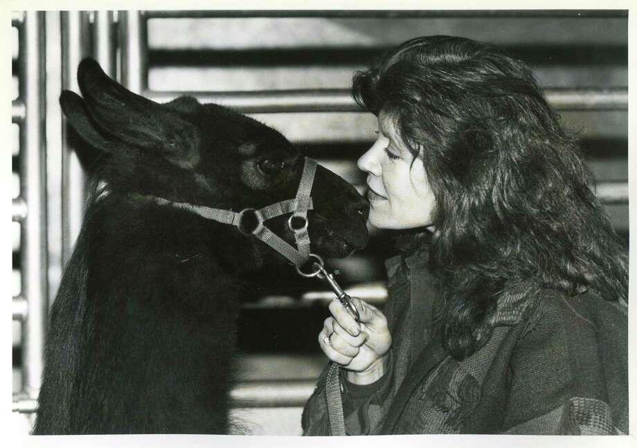 1993: Patsy Martin of Comanche, Texas with her llama Rainy Jean Photo: San Antonio Express-News