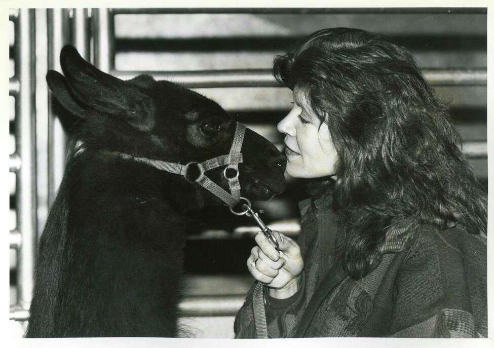 1993: Patsy Martin of Comanche, Texas with her llama Rainy Jean
