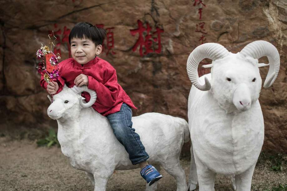 Although the ram is the symbol of the Lunar New Year in Hong Kong, most of the rest of China has chosen the more cute and cuddly sheep. Hong Kong is using the ram as the symbol of the Lunar New Year, most of the rest of China has chosen the more cute and cuddly sheep. this boy sat atop the model of a ram Photo: PHILIPPE LOPEZ / AFP / Getty Images / AFP
