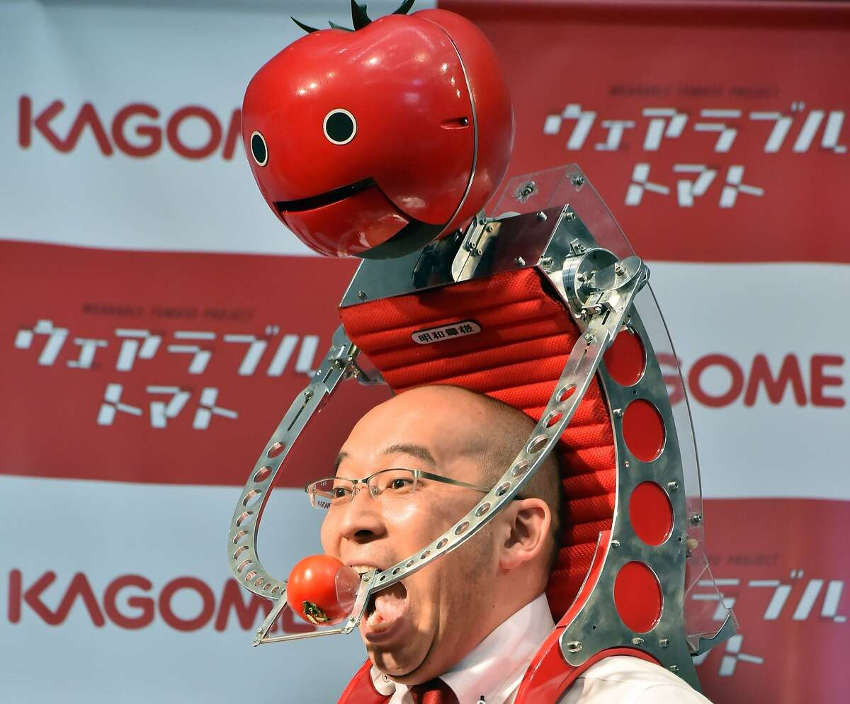 """FINALLY, A PRACTICAL SOLUTION: Kagome employee Shigenori Suzuki tries to eat a tomato offered by the food company's new shoulder-mounted tomato dispenser for marathon runners. The idea of the """"Tomatan"""" is to provide a hands-free tomato-eating experience to runners who require nourishment in mid-race."""