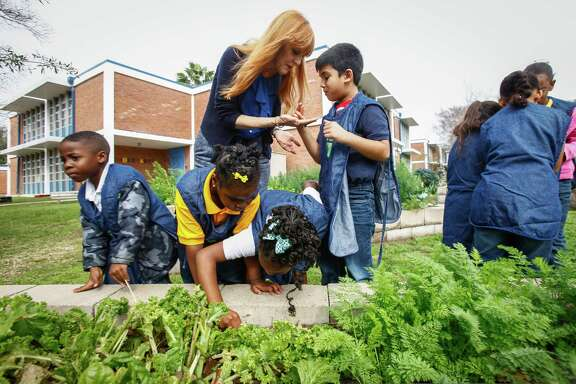 Students work year round in their class' vegetable garden. Recipe for Success is aimed at combating childhood obesity by changing the way children understand, appreciate and eat their food.