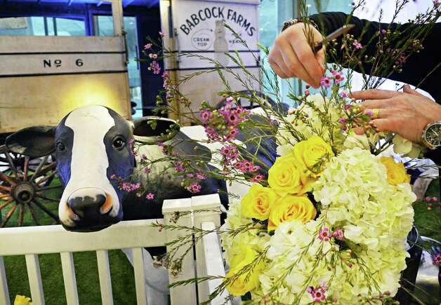 """David Michael Schmidt of Renaissance Floral Design on Western Avenue arranges flowers in his """"Old McDonald had a Farm"""" display Thursday Feb. 19, 2015, in the lobby of the NYS Museum for the annual New York in Bloom show in Albany, NY.  (John Carl D'Annibale / Times Union) Photo: John Carl D'Annibale / 00030443A"""