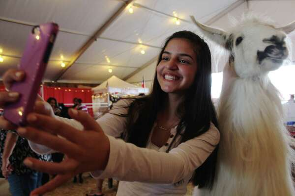 From the carnival grounds to the animal pens, fans love the annual San Antonio Stock Show and Rodeo. Our mySpy camera hit the rodeo to capture visitors doing what they do best.