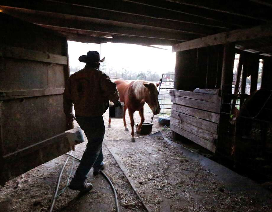 Northeastern Trail Riders Association trail boss Anthony Bruno prepares for the trail ride. Photo: James Nielsen, Houston Chronicle / © 2015  Houston Chronicle