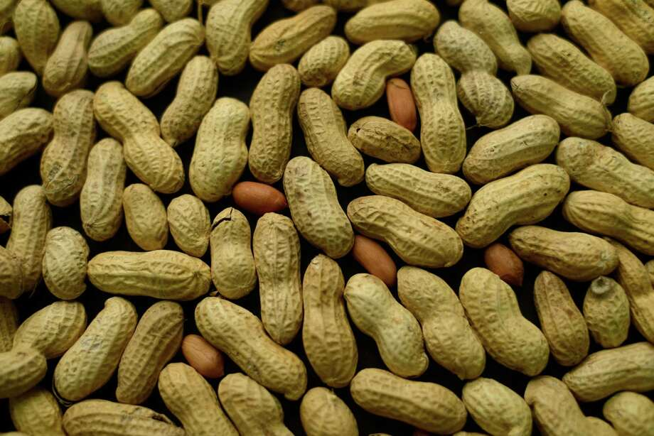 This Feb. 20, 2015, photo shows an arrangement of peanuts in New York. For years, parents of babies who seem likely to develop a peanut allergy have gone to extremes to keep them away from peanut-based foods. Now, a major study suggests that is exactly the wrong thing to do. (AP Photo/Patrick Sison) ORG XMIT: NY460 Photo: Patrick Sison / AP
