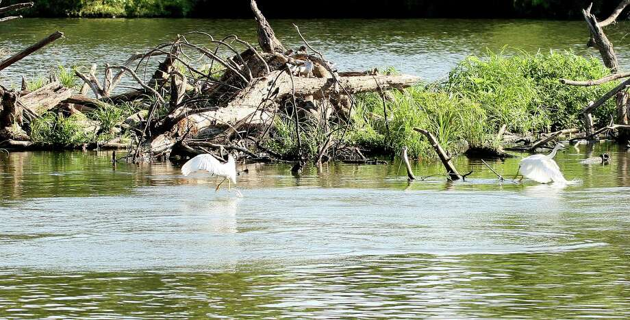 Where does your water come from?Texas only hasone natural lake, but you've probably seen many. Those are all reservoirs--119 of them in the state--created by damming rivers to stockpile water and quench the thirst of millions of Texans.Check out our slideshow to see where major Texas cities get their water. Photo: Picasa