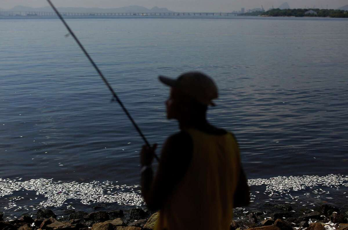 Flavio Rodrigues, a retired rail worker, fishes on the shore of Guanabara Bay where dead fish float in Rio de Janeiro.