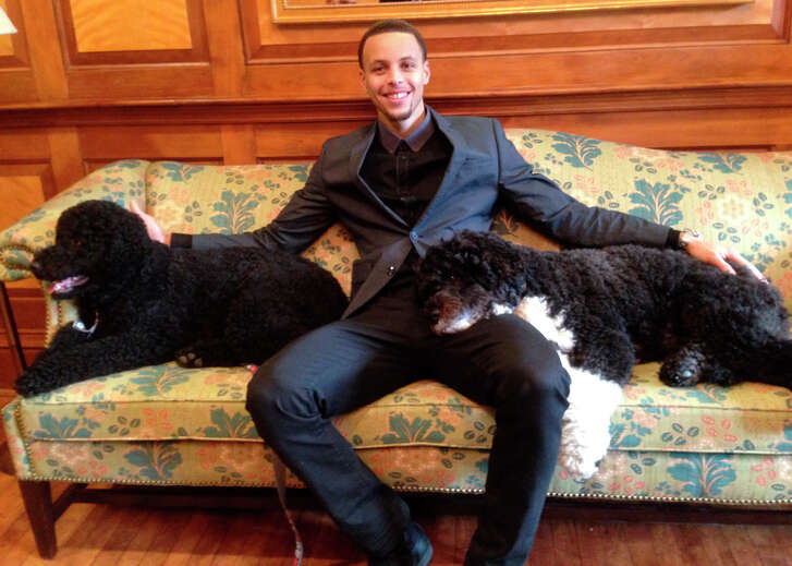 Stephen Curry spent couch time with presidential pooches Bo and Sunny during his visit.