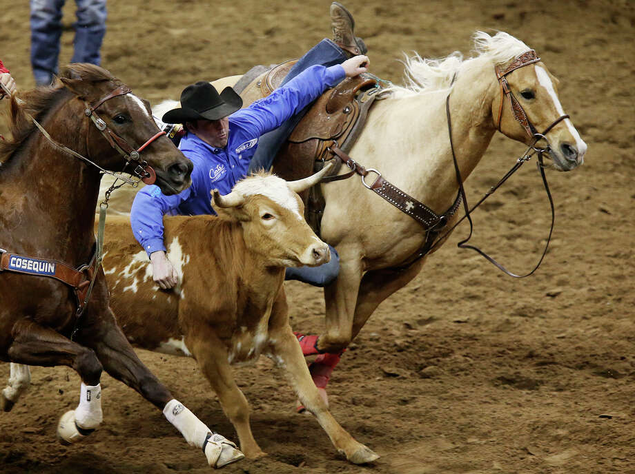 Sean Mulligan, of Coleman, Oklahoma, slides over to capture the top spot in the Steer Wrestling competition at the San Antonio Stock Show & Rodeo Semifinals second night of a two-night event, Wednesday, February 25, 2015. Mulligan's time was 4.0 seconds. Photo: Jerry Lara /San Antonio Express-News / © 2015 San Antonio Express-News