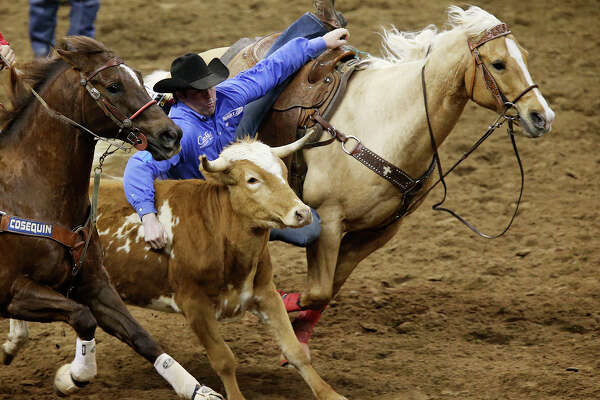 Sean Mulligan, of Coleman, Oklahoma, slides over to capture the top spot in the Steer Wrestling competition at the San Antonio Stock Show & Rodeo Semifinals second night of a two-night event, Wednesday, February 25, 2015. Mulligan's time was 4.0 seconds.