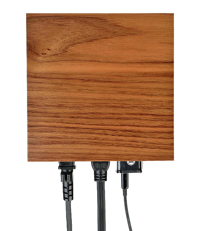 Walnut Faceplate by Living Plug, $30. http://livingplug.com/