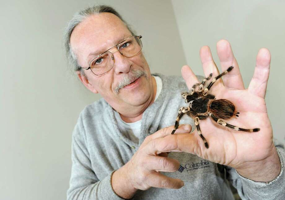 Dean Davis of Ravena with his tarantula, Spike, on Tuesday, Feb. 24, 2015, at the Ravena Public Library in Ravena, N.Y. Davis is an animal educator that has been teaching kids about snakes, insects and other interesting animals for 30 years. His house is close to being foreclosed on because of unpaid taxes. Friends and supporters have rallied to help Davis pay off the taxes on his house. (Cindy Schultz / Times Union) Photo: Cindy Schultz / 00030737A