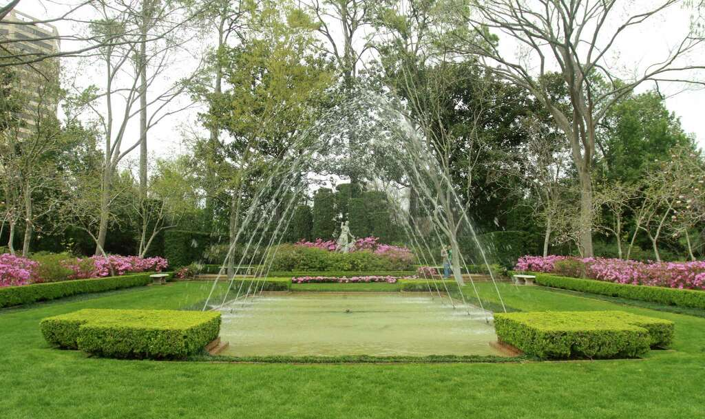 (For The Chronicle/Gary Fountain) Azaleas Blooming In The Diana Garden At  Bayou