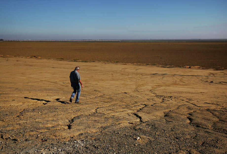 Bill Diedrich, vice chair of the San Luis water district board of directors, walks through a fallow Fresno County tomato field. Photo: Leah Millis / The Chronicle / ONLINE_YES