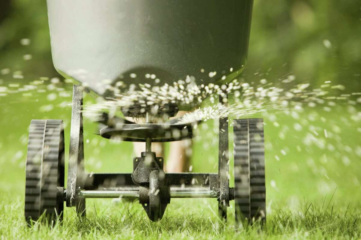 Hold off fertilizing the lawn until late April. Important chores now are aerating and applying pre-emergent herbicide to control sand burs.