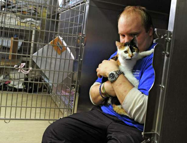 Volunteer Isaac Lethcford of Troy holds a kitten named Galaxy in her cage at the Mohawk Hudson Humane Society on Friday, Feb. 27, 2015 in Albany, N.Y. (Lori Van Buren / Times Union) Photo: Lori Van Buren / 00030808A