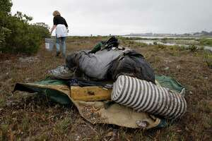 Bill would double federal funds to restore S.F. Bay - Photo