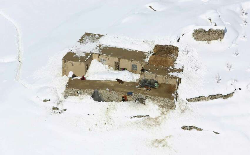 A cow stands on the roof of a house after an avalanche in the Paryan district of Panjshir province, north of Kabul, Afghanistan, Friday, Feb. 27, 2015. The death toll from severe weather that caused avalanches and flooding across much of Afghanistan has jumped to more than 200 people, and the number is expected to climb with cold weather and difficult conditions hampering rescue efforts, relief workers and U.N. officials said Friday.AP story: Afghan avalanche death toll rises amid rescue effort