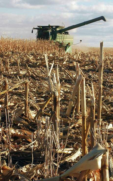 A combine works its way through a field near Roscoe, S.D. Agriculture Secretary Tom Vilsack says the foes of biofuels will seize on any chance to take momentum from the industry. Photo: Associated Press File Photo / AP