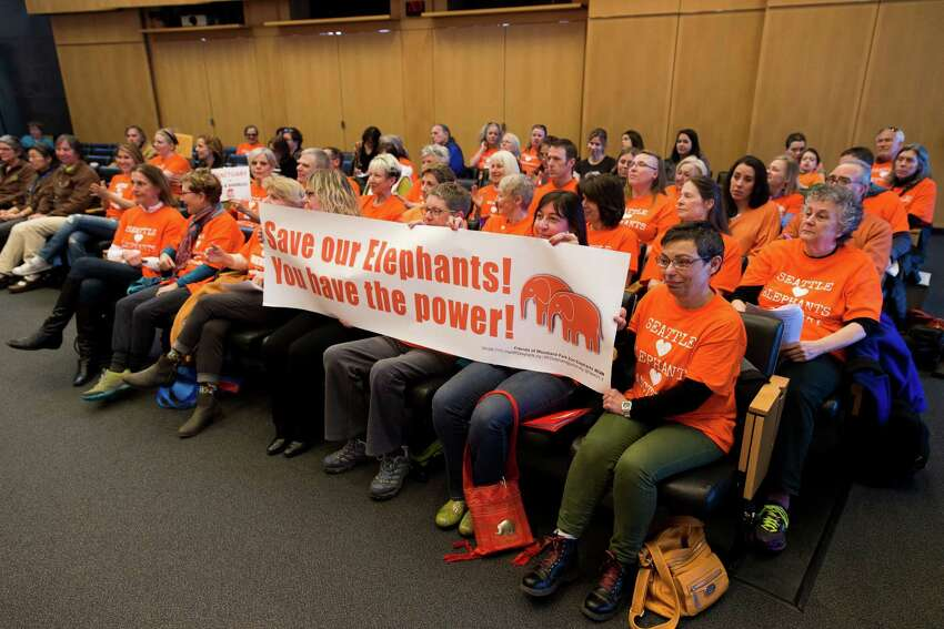 Advocates attend a Seattle City Council meeting to urge the board to pass a resolution requiring Woodland Park Zoo to retire their elephants to a sanctuary, as photographed Monday, March 2, 2015, at City Hall in downtown Seattle, Washington. On Friday, the Zoo announced plans to send elephants Bamboo and Chai to the Oklahoma City Zoo.