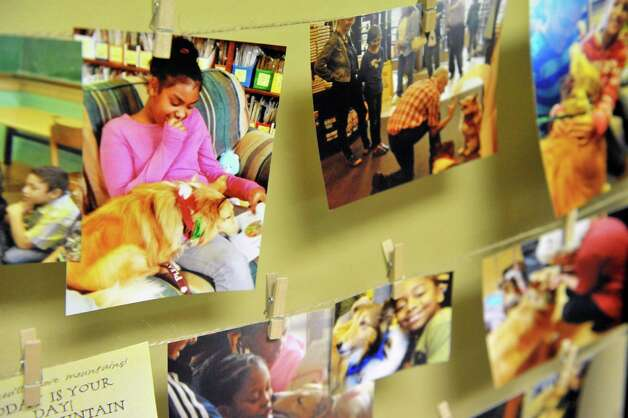 Photographs of Terry Brown, his two dogs and students  at Franklin D. Roosevelt Elementary School are on display during an award ceremony for Brown on Tuesday, March 3, 2015, in Schenectady, N.Y.  Brown was awarded a Daily Point of Light award for his volunteer work with his two shelties, Ziggy and Jenna.  Brown and his dogs lead reading programs for children at local schools.  The national award for volunteers originated out of the White House in 1989 under former President George H.W. Bush.   (Paul Buckowski / Times Union) Photo: PAUL BUCKOWSKI / 00030814A