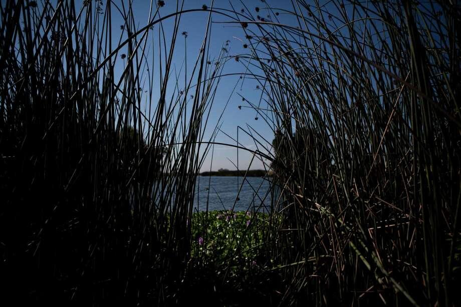The Sacramento-San Joaquin River Delta's Pixley Slough near the Stockton. Photo: Max Whittaker/Prime / Max Whittaker/Prime / Special To The Chronicle / ONLINE_YES