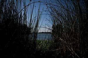 Sacramento-San Joaquin Delta could get U.S. 'heritage' protection - Photo