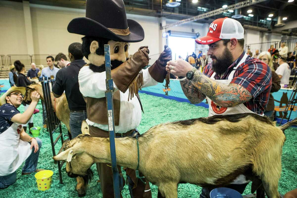 The Houston Chronicle's Criag Hlavaty gets some milking tips for the RodeoHouston mascot as he gets ready to participate in the celebrity goat milking contest during the Houston Livestock Show and Rodeo at NRG Center on Tuesday, March 3, 2015, in Houston.