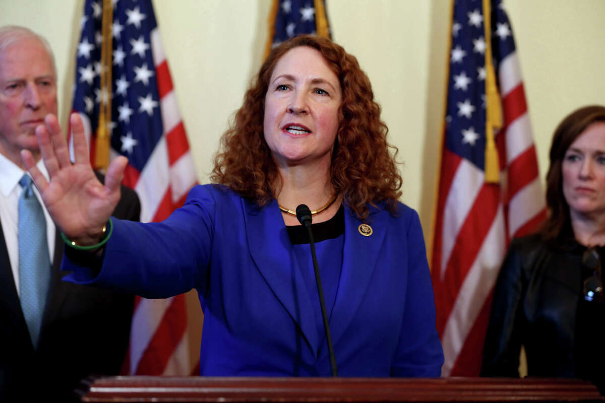 Rep. Elizabeth Esty, D-Conn., speaks during a press conference to announce a bipartisan bill to expand the gun purchasing background check system, Wednesday, March 4, 2015, in Washington, D.C.