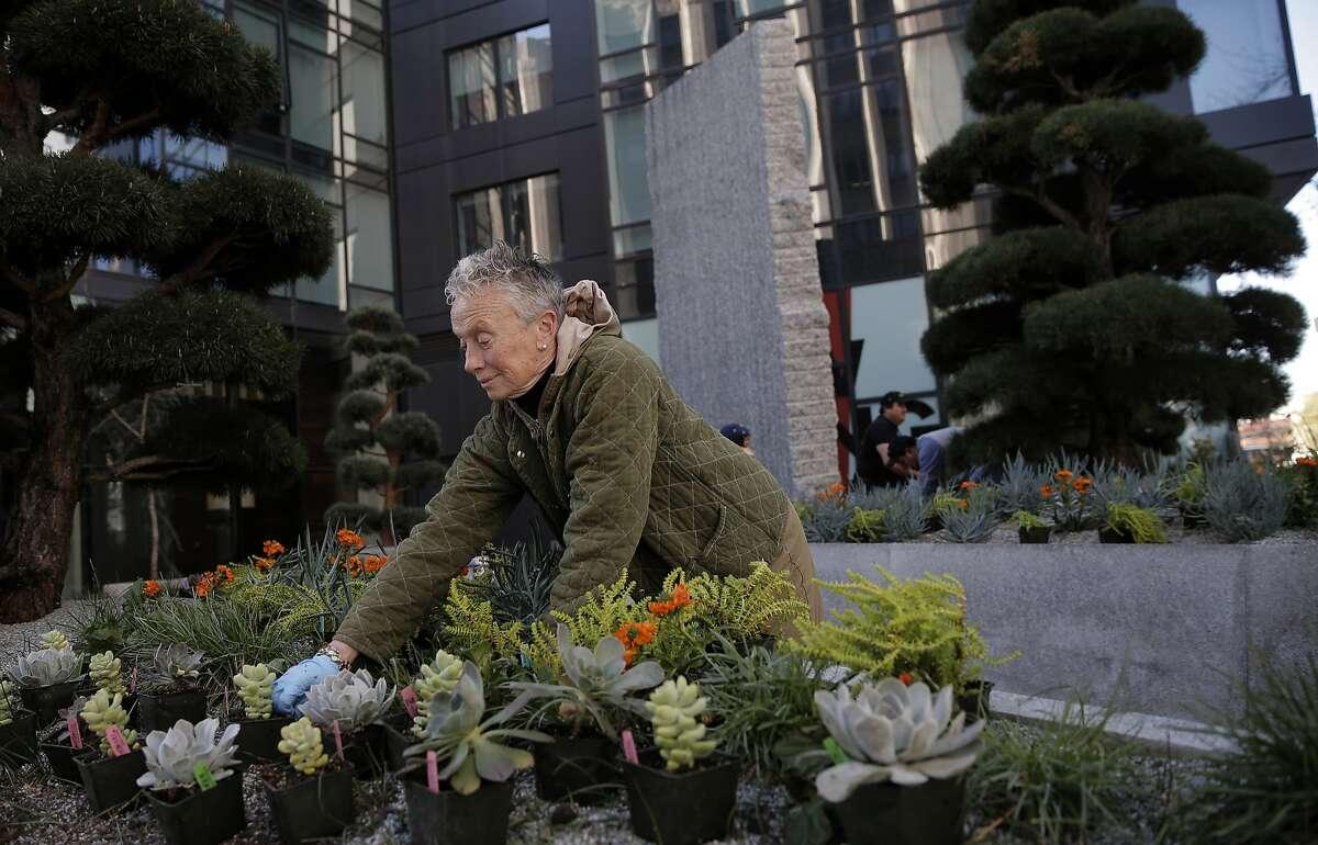 Replanting the art installation