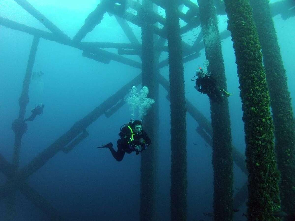 Scientists at the Harte Research Institute for Gulf of Mexico Studies in Corpus Christi are conducting a four-year study of fish populations around artificial reefs. Credit: Harte Research Institute