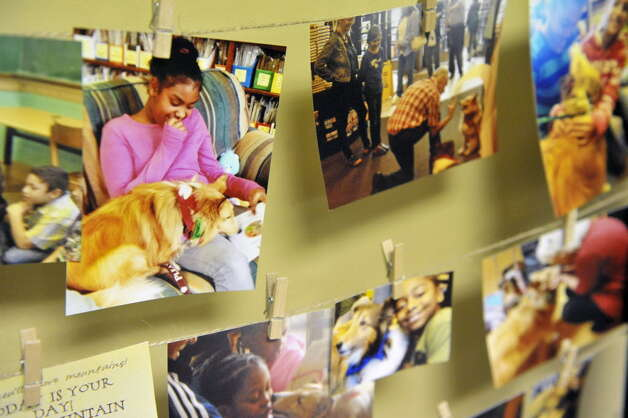 Photographs of Terry Brown and his two shelties, Ziggy and Jenna, as well as students at Franklin D. Roosevelt Elementary School were on display during an award ceremony for Brown on Tuesday in Schenectady. (Paul Buckowski / Times Union)