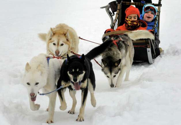 Saint Gregory's School first grade students Chase Craig, left, and Tadhg Swaine, right, get a ride on a dog sled driven by musher Kate Walrath on Thursday March 5, 2015, at Saint Gregory's School in Loudonville, N.Y. Saint Gregory?s classes will follow the progress of this year?s Iditarod race. The Kindergarten has prepared a map to help students track the race. The activities are design to help pupils learn about Alaska, and to experience how difficult the event is. (Michael P. Farrell/Times Union) Photo: Michael P. Farrell / 10030850A