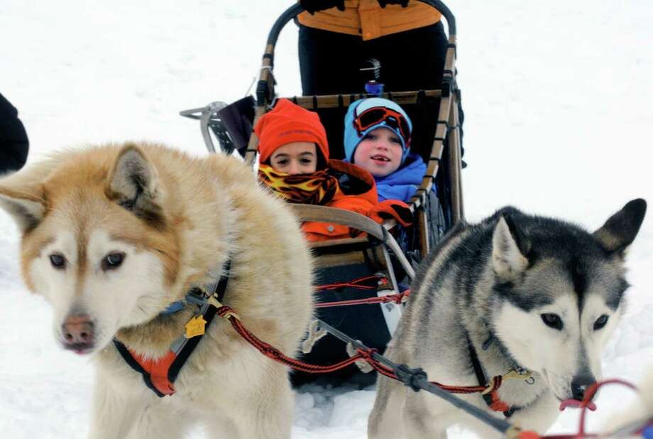 Saint Gregory's School first grade students Chase Craig, left, and Tadhg Swaine, right, get a ride on a dog sled driven by musher Kate Walrath on Thursday March 5, 2015, at Saint Gregory's School in Loudonville, N.Y. Saint Gregory's classes will follow the progress of this year's Iditarod race. The Kindergarten has prepared a map to help students track the race. The activities are design to help pupils learn about Alaska, and to experience how difficult the event is. (Michael P. Farrell/Times Union) Photo: Michael P. Farrell / 10030850A