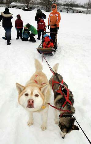 Saint Gregory's School first grade get a ride on a dog sled driven by musher Kate Walrath and pulled by sled dogs Lux, left, and Icarus, right, on Thursday March 5, 2015, at Saint Gregory's School in Loudonville, N.Y. Saint Gregory?s classes will follow the progress of this year?s Iditarod race. The Kindergarten has prepared a map to help students track the race. The activities are design to help pupils learn about Alaska, and to experience how difficult the event is. Walrath runs a pet service called Run By Dogs, which offers sled dog excursions and educational programs. (Michael P. Farrell/Times Union) Photo: Michael P. Farrell / 10030850A