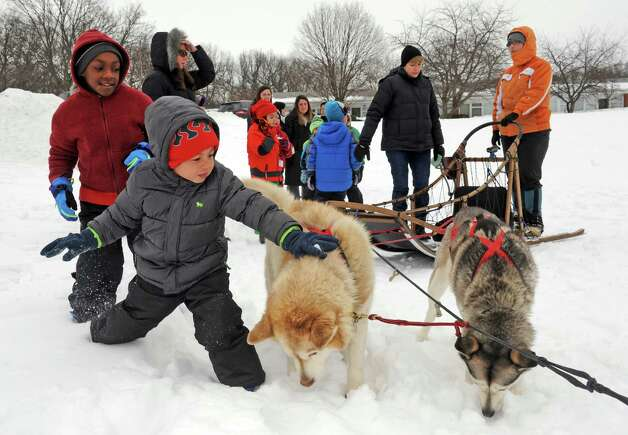 Saint Gregory's School first graders get a ride on a dog sled driven by musher Kate Walrath on Thursday, March 5, 2015, at Saint Gregory's School in Loudonville, N.Y.  Saint Gregory?s classes will follow the progress of this year?s Iditarod race. The Kindergarten has prepared a map to help students track the race. The activities are design to help pupils learn about Alaska, and to experience how difficult the event is. (Michael P. Farrell/Times Union) Photo: Michael P. Farrell / 10030850A