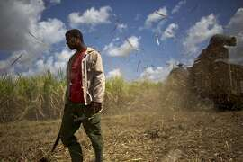 Cuba: A sugar cane worker is surrounded by flying cane, kicked up by a cutting machine in Artemisa, Cuba, Tuesday, March 3, 2015.